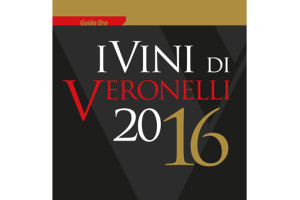 COPERTA VERONELLI_2016.indd